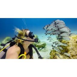 GoPro Blue Water Dive Filter - Filtru pentru carcasa Super Suit